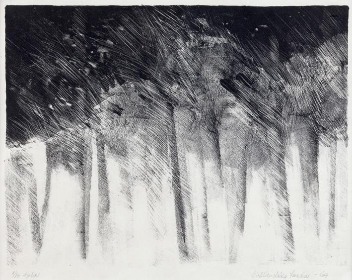 Metsä 1968